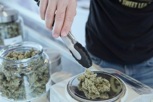 hand using tongs to weigh cannabis on scale