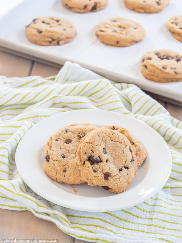 two gluten free chocolate chip weed cookies on a white plate on top of a green and white striped dish towel with a cookie sheet in the background