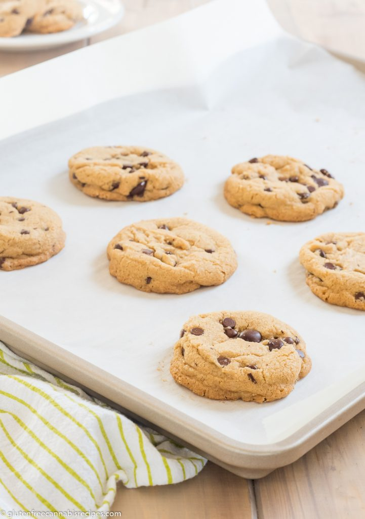 cookie sheet lined with parchment paper with gluten free chocoalte chip pot cookies baked on it