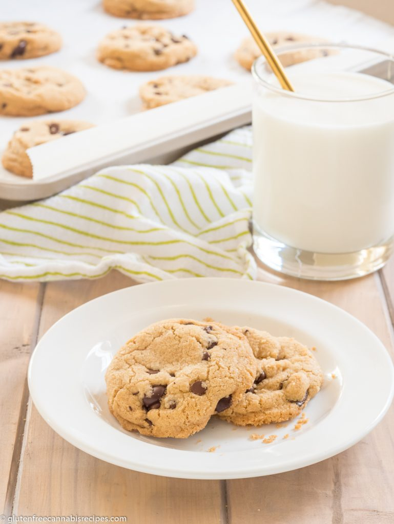white plate with two gluten free chocolate chip marijuana cookies with a glass of milk